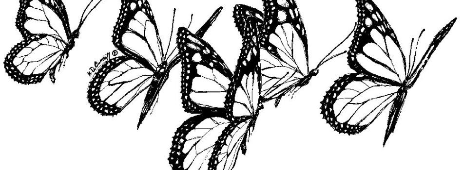 Fundraising art - butterfly three - Katie Dobson Cundiff