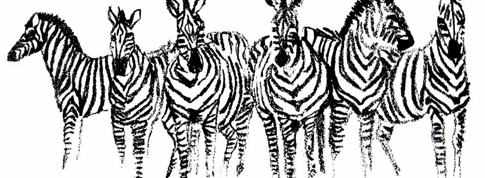 Fundraising art - zebras - Katie Dobson Cundiff